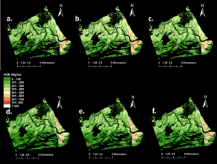 Figure 1. Zambezi Delta mangrove AGB maps derived from different allometric models. a) Chave linear, b) Komiyama linear, c) Njana linear, d) Chave power, e) Komiyama power, f) Njana power; from Fatoyinbo et al. (in review)